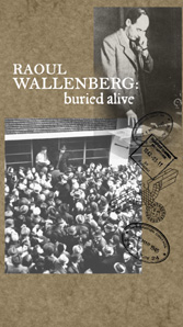Raoul Wallenberg: Buried Alive (VHS)